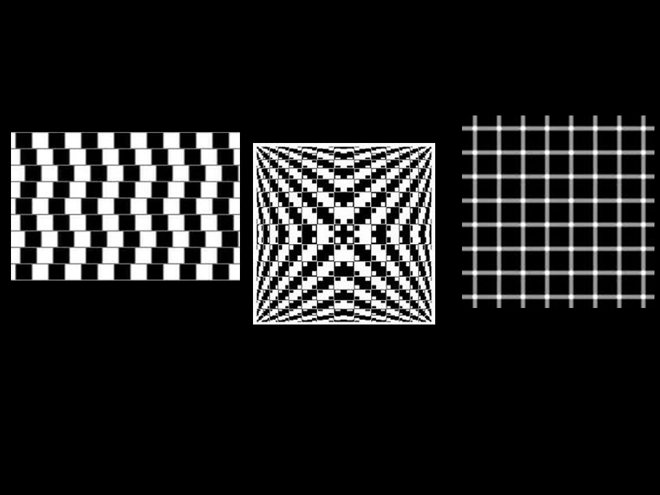 OP-ART is art that creates an optical illusion