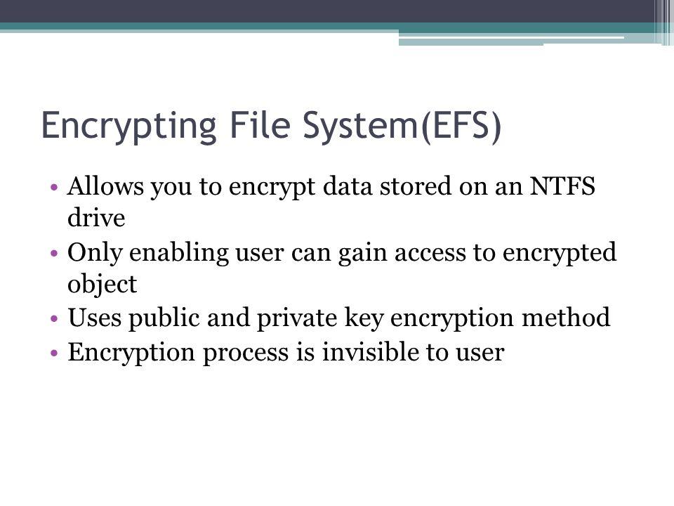 Encrypting File System(EFS)