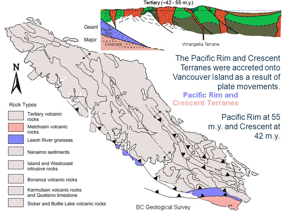 The Pacific Rim and Crescent Terranes were accreted onto Vancouver Island as a result of plate movements.
