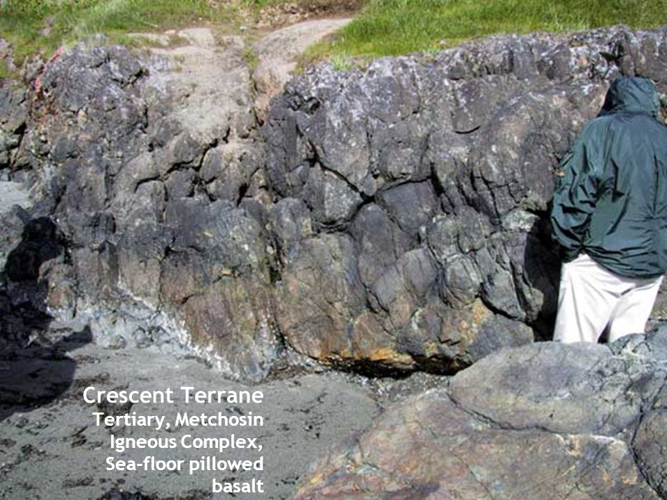 Crescent Terrane Tertiary, Metchosin Igneous Complex, Sea-floor pillowed basalt