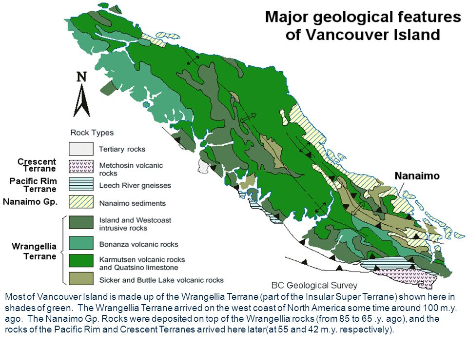 Most of the island is made up of the Wrangellia Terrane (part of the Insular Super Terrane) shown here in shades of green. The Wrangellia Terrane arrived on the west coast of North America some time around 100 m.y. ago. The Nanaimo Gp. Rocks were deposited on top of the Wrangellia rocks (from 85 to 65 .y. ago), and the rocks of the Pacific Rim and Crescent Terranes arrived here later(at 55 and 42 m.y. respectively).