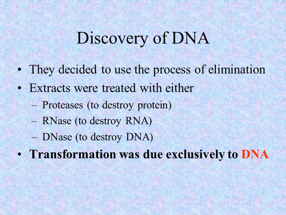 Discovery of DNA They decided to use the process of elimination