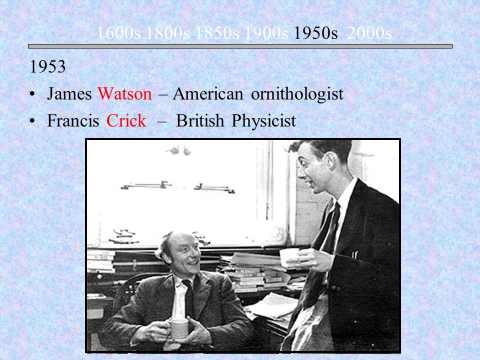 James Watson – American ornithologist