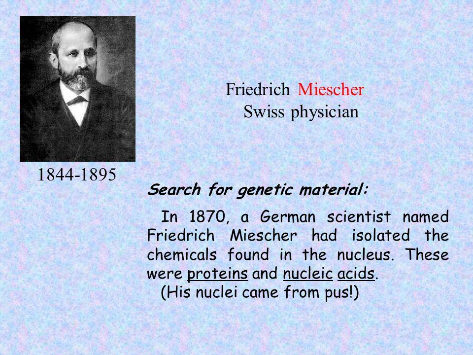 Friedrich Miescher Swiss physician