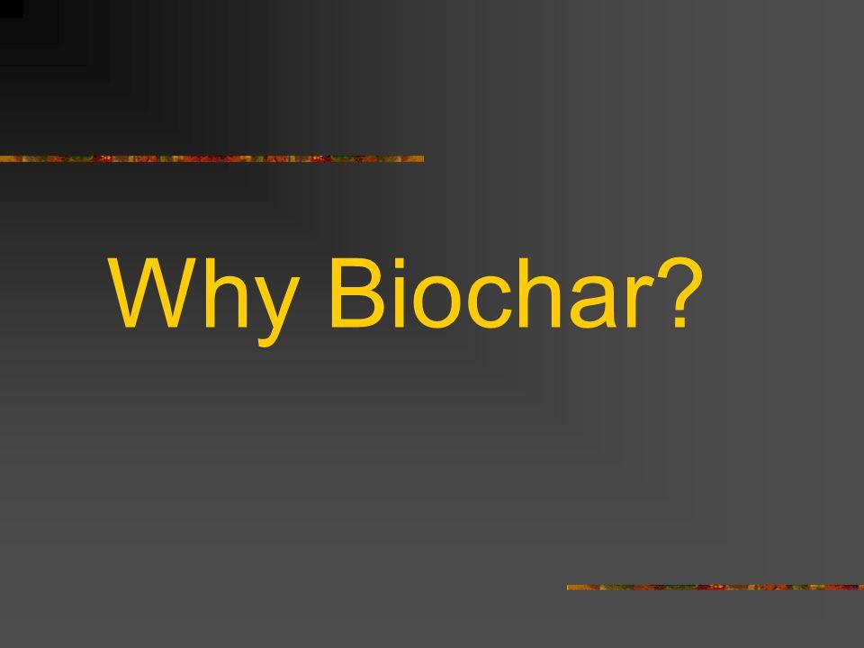 Why Biochar