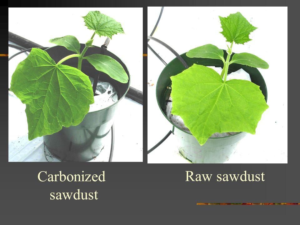 Carbonized sawdust Raw sawdust