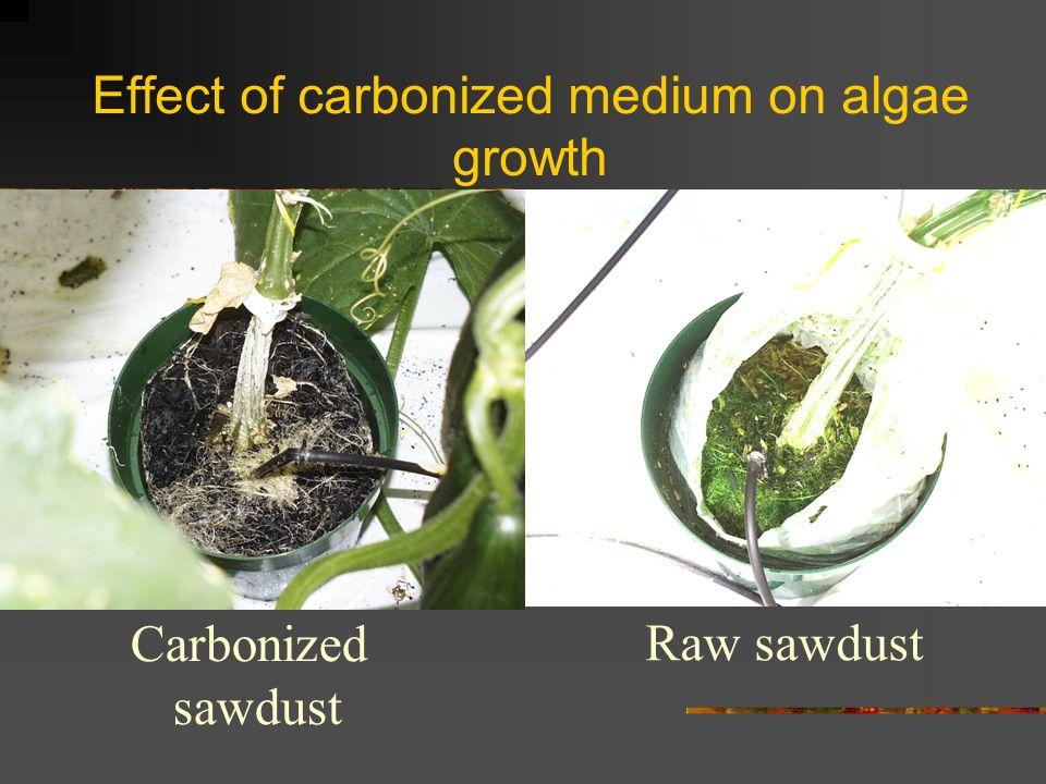 Effect of carbonized medium on algae growth