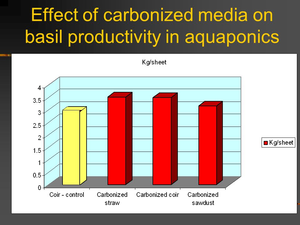 Effect of carbonized media on basil productivity in aquaponics