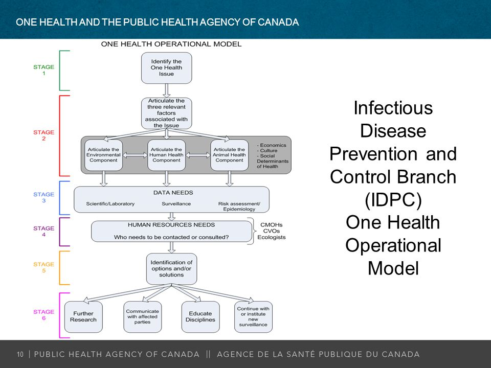 Infectious Disease Prevention and Control Branch (IDPC)