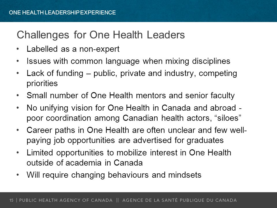 Challenges for One Health Leaders