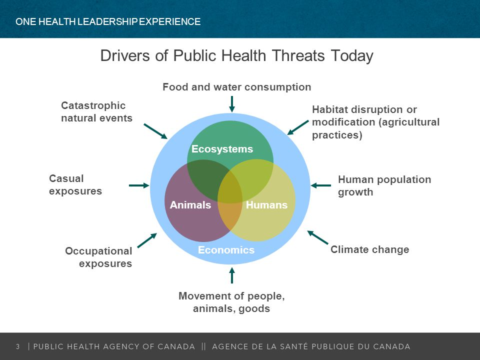 Drivers of Public Health Threats Today