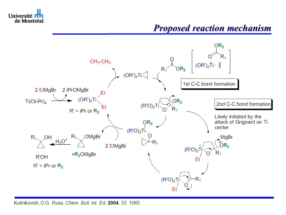 Proposed reaction mechanism