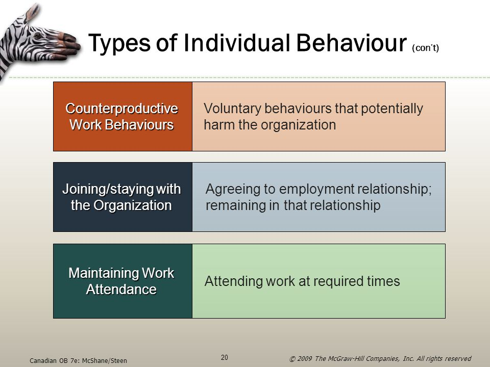 Types of Individual Behaviour (con't)