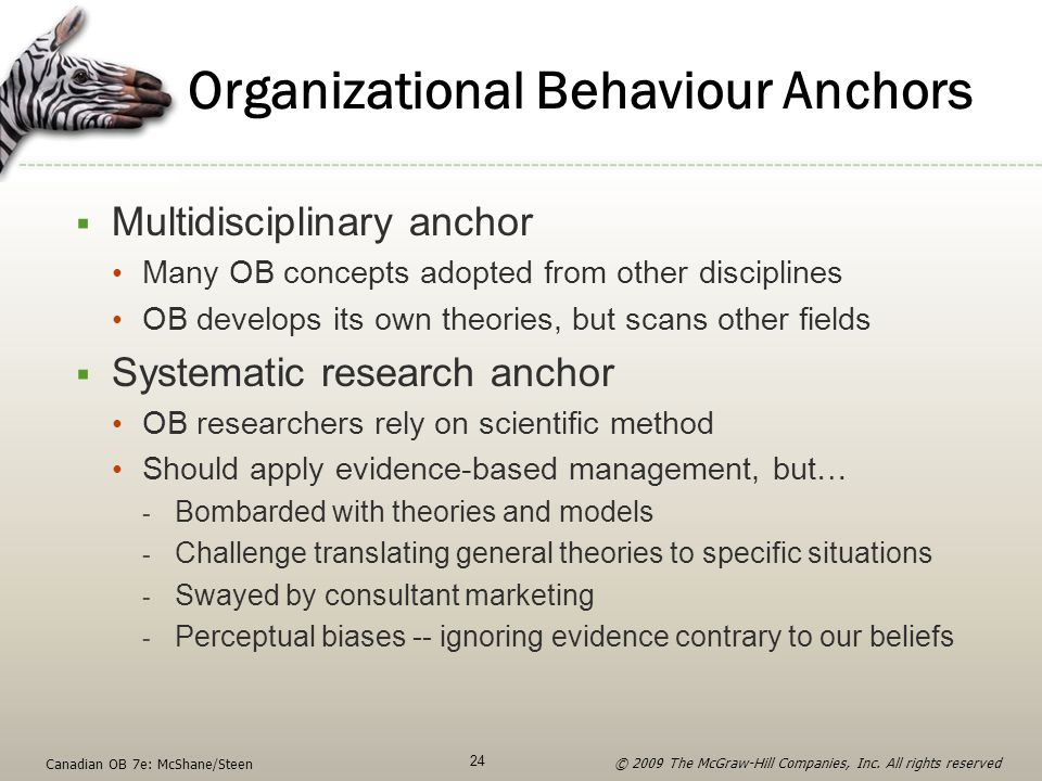 Organizational Behaviour Anchors
