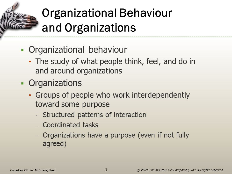 Organizational Behaviour and Organizations