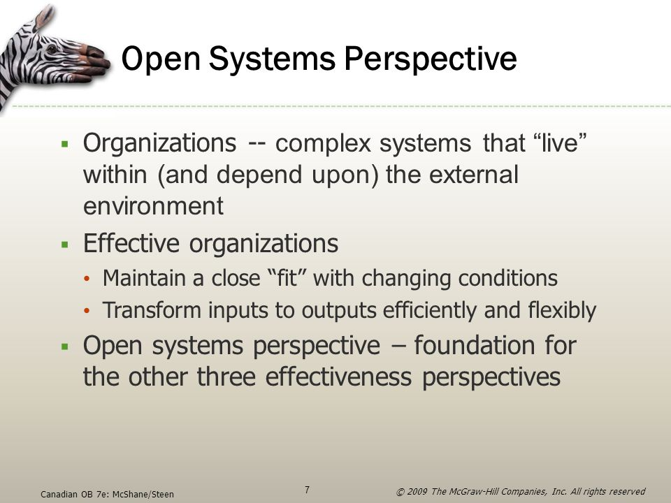 Open Systems Perspective