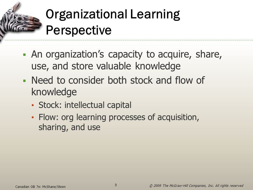 Organizational Learning Perspective