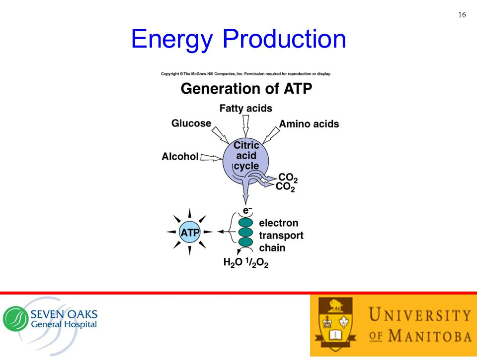 16 Energy Production