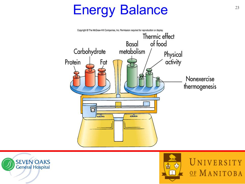 Energy Balance 23