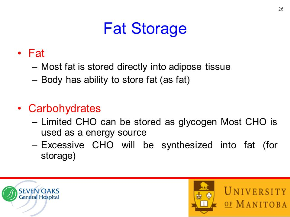 Fat Storage Fat Carbohydrates