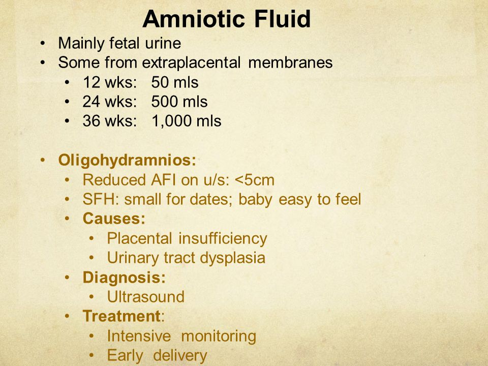 Amniotic Fluid Mainly fetal urine Some from extraplacental membranes