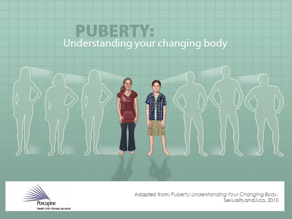 Adapted from: Puberty: Understanding Your Changing Body. SexualityandU