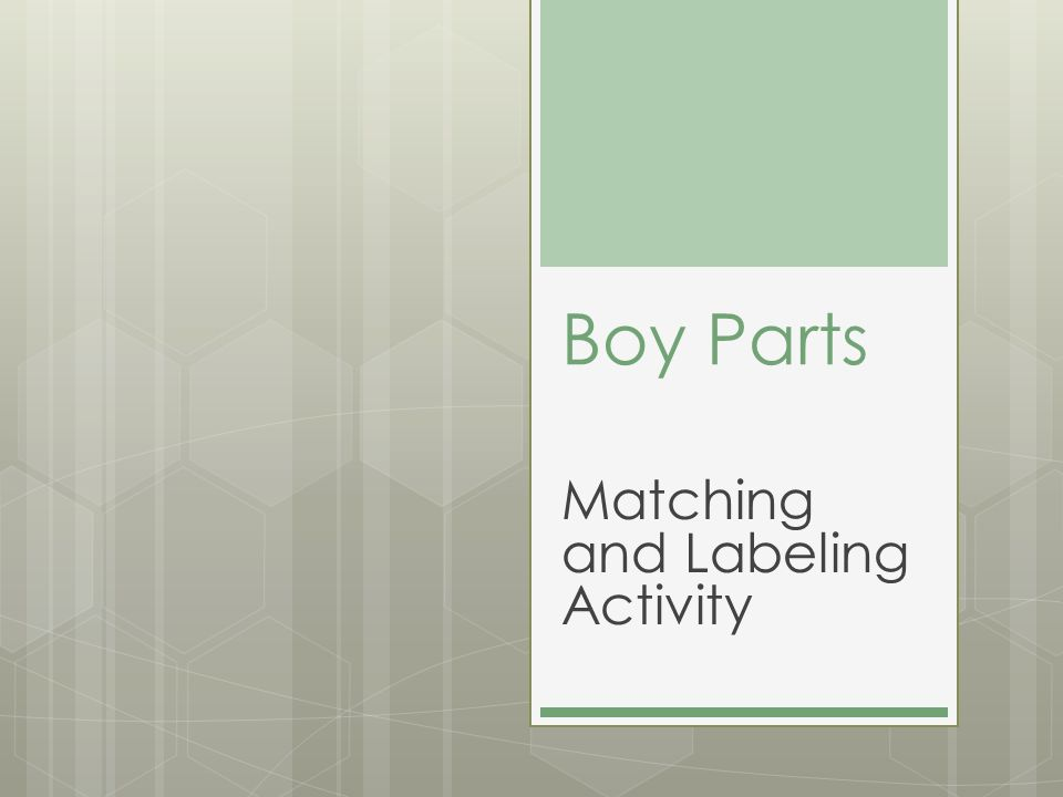 Matching and Labeling Activity