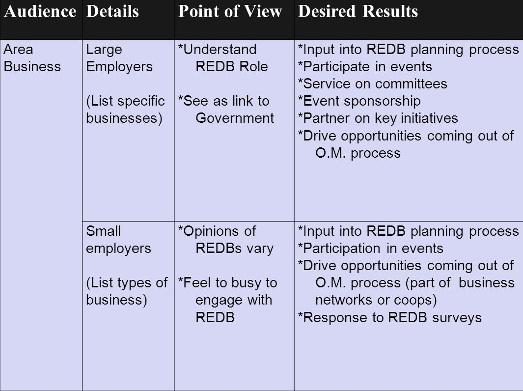 Audience Details Point of View Desired Results Area Business