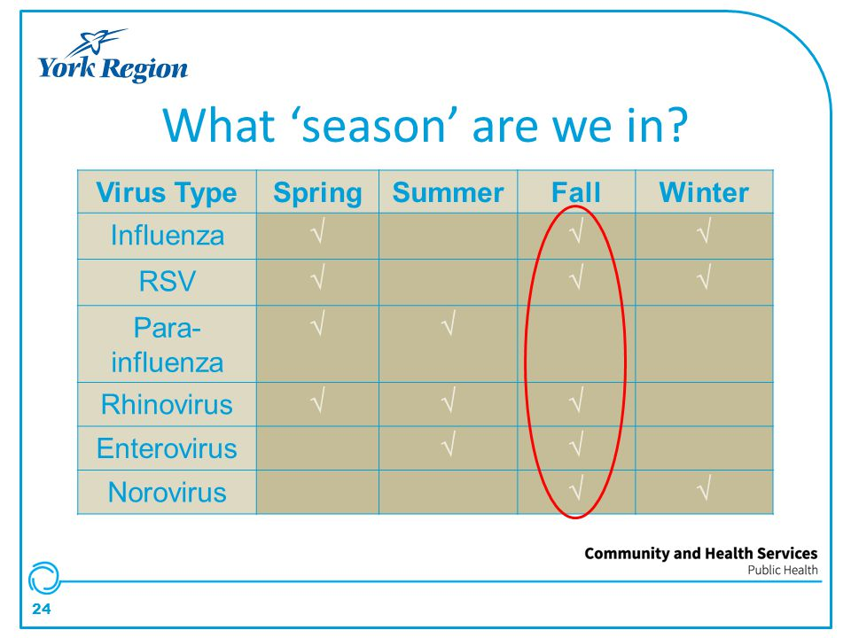 What 'season' are we in Virus Type Spring Summer Fall Winter