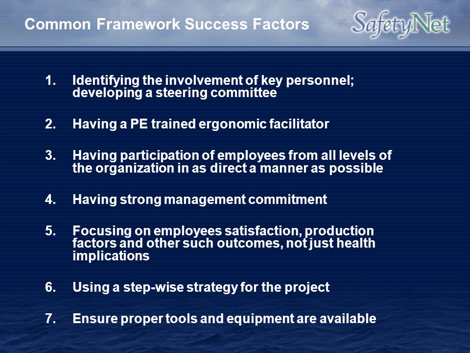 Common Framework Success Factors