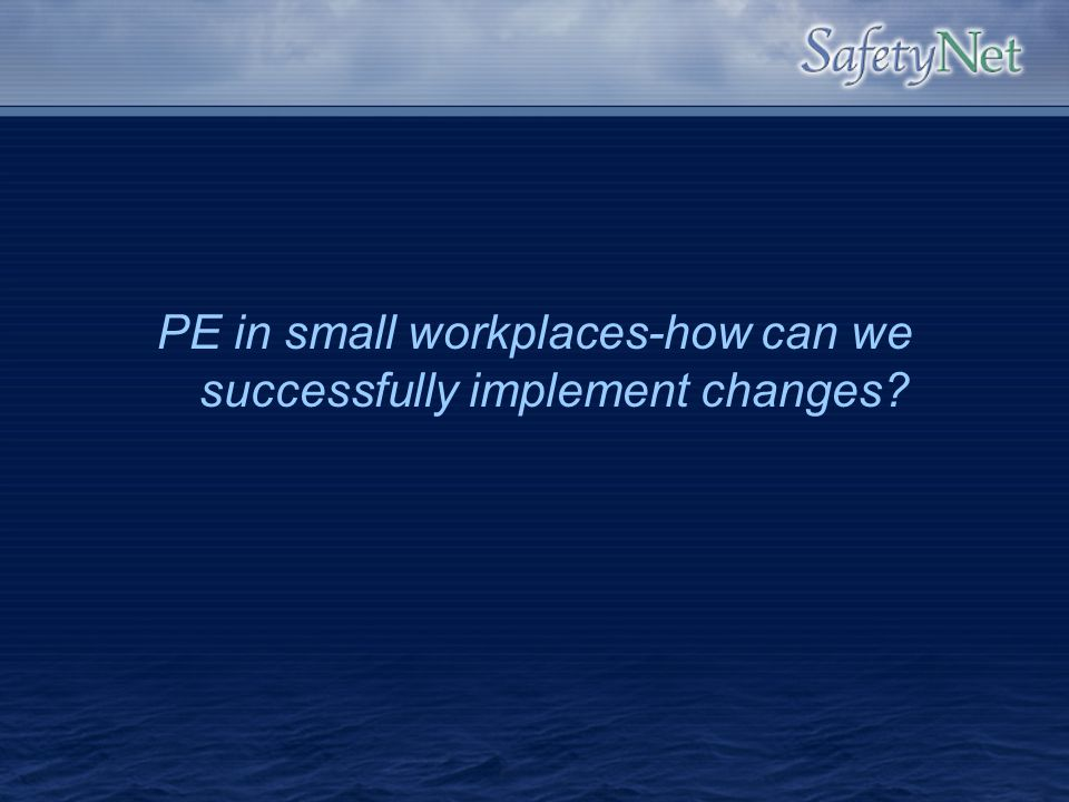 PE in small workplaces-how can we successfully implement changes