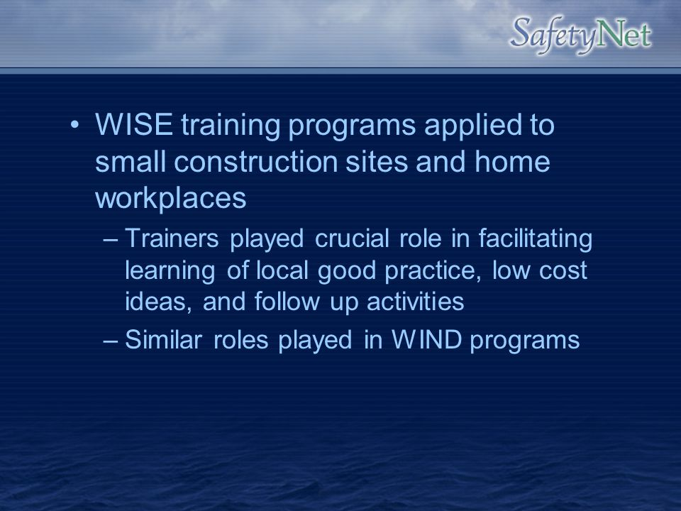 WISE training programs applied to small construction sites and home workplaces