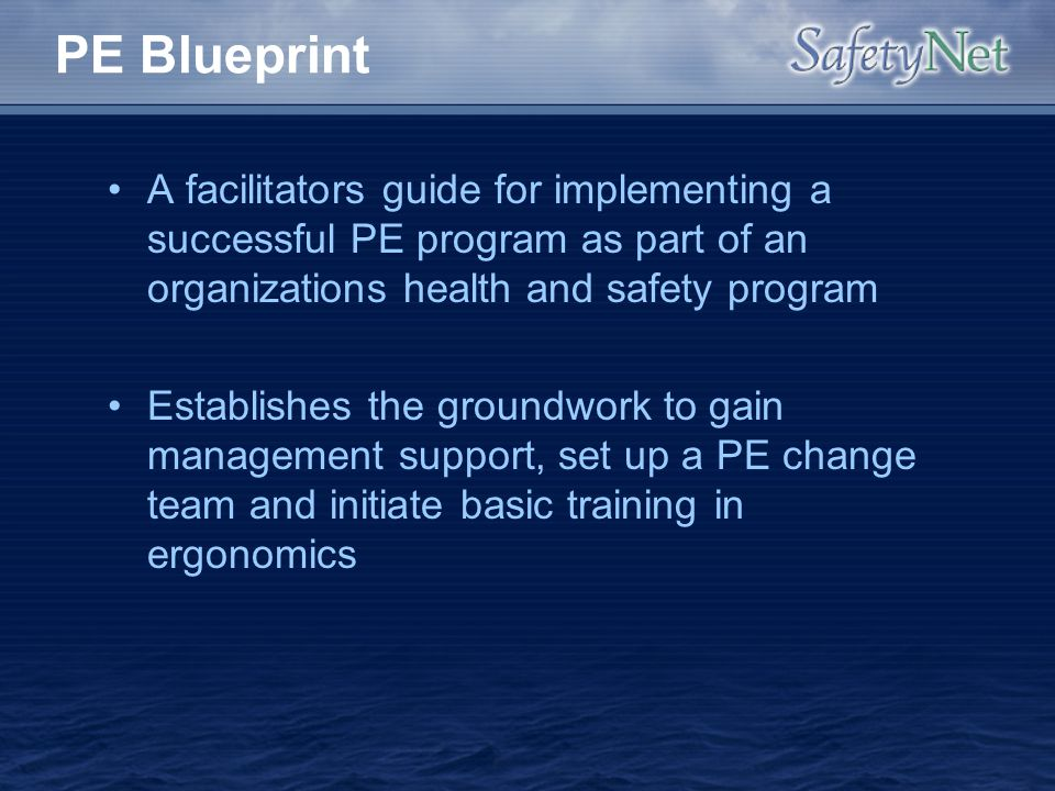 PE Blueprint A facilitators guide for implementing a successful PE program as part of an organizations health and safety program.