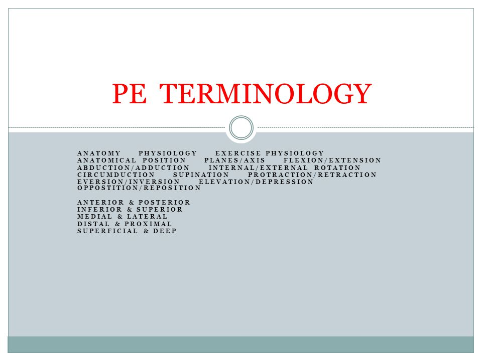 PE TERMINOLOGY ANATOMY PHYSIOLOGY EXERCISE PHYSIOLOGY - ppt video ...