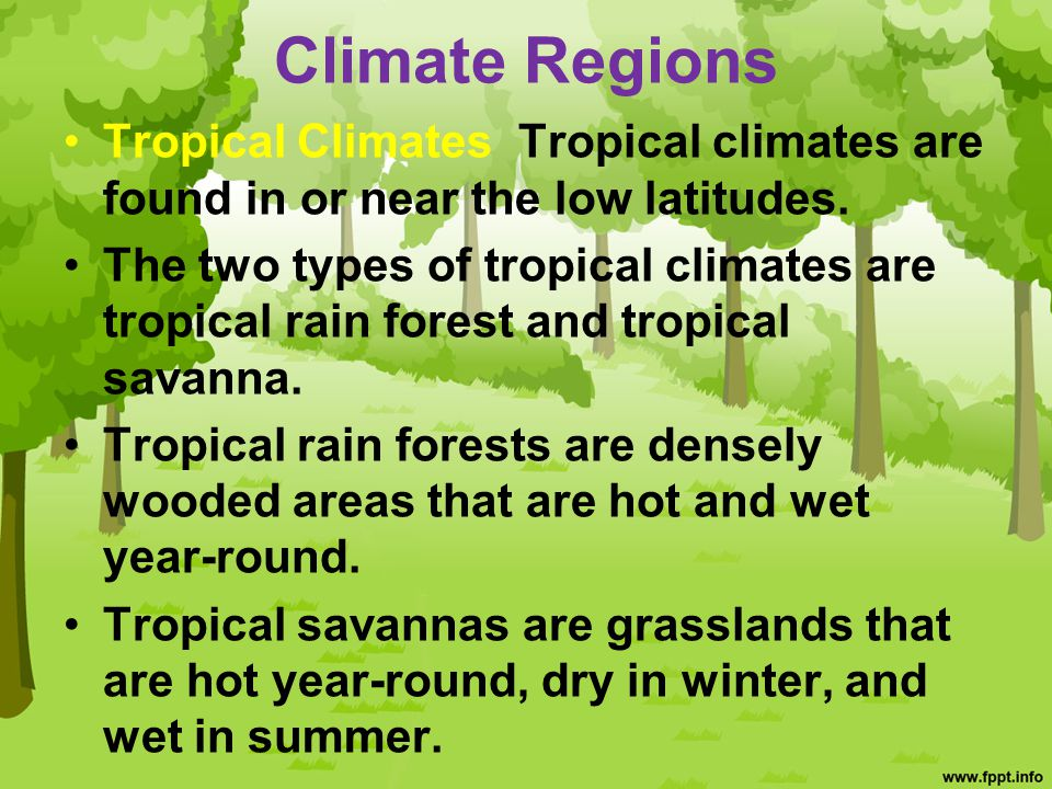 Climate Regions Tropical Climates Tropical climates are found in or near the low latitudes.