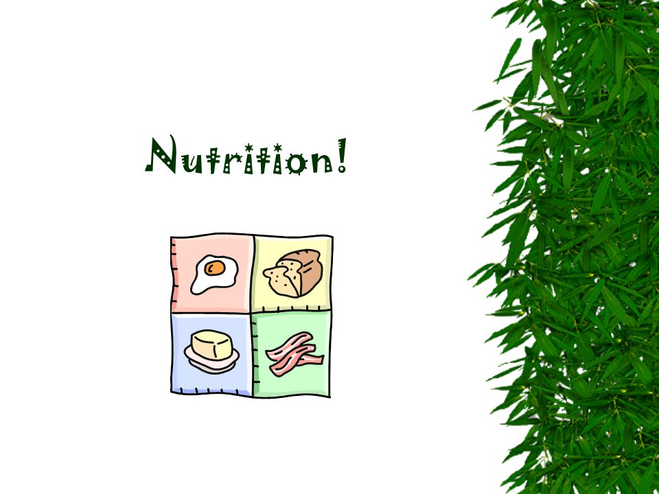 Nutrition!