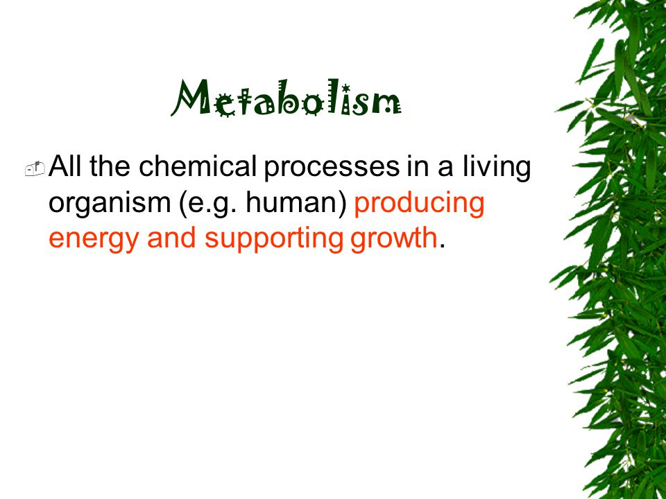Metabolism All the chemical processes in a living organism (e.g.