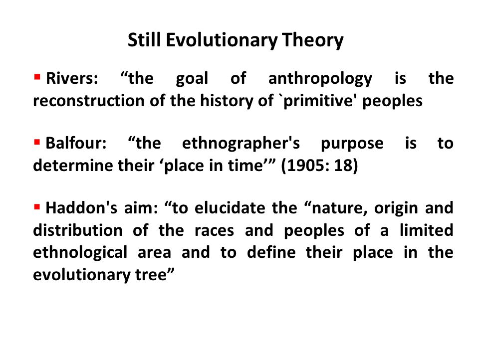 Still Evolutionary Theory