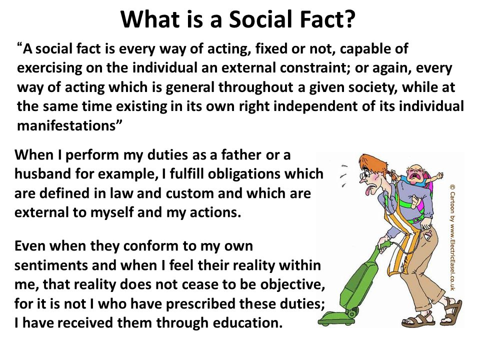 What is a Social Fact
