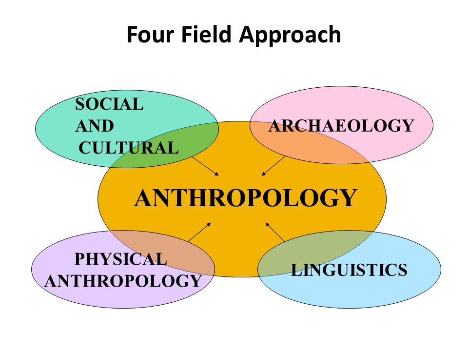 Four Field Approach SOCIAL ARCHAEOLOGY AND CULTURAL PHYSICAL
