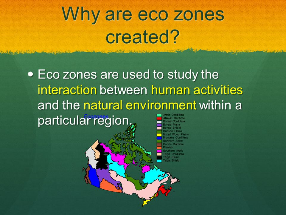 Why are eco zones created
