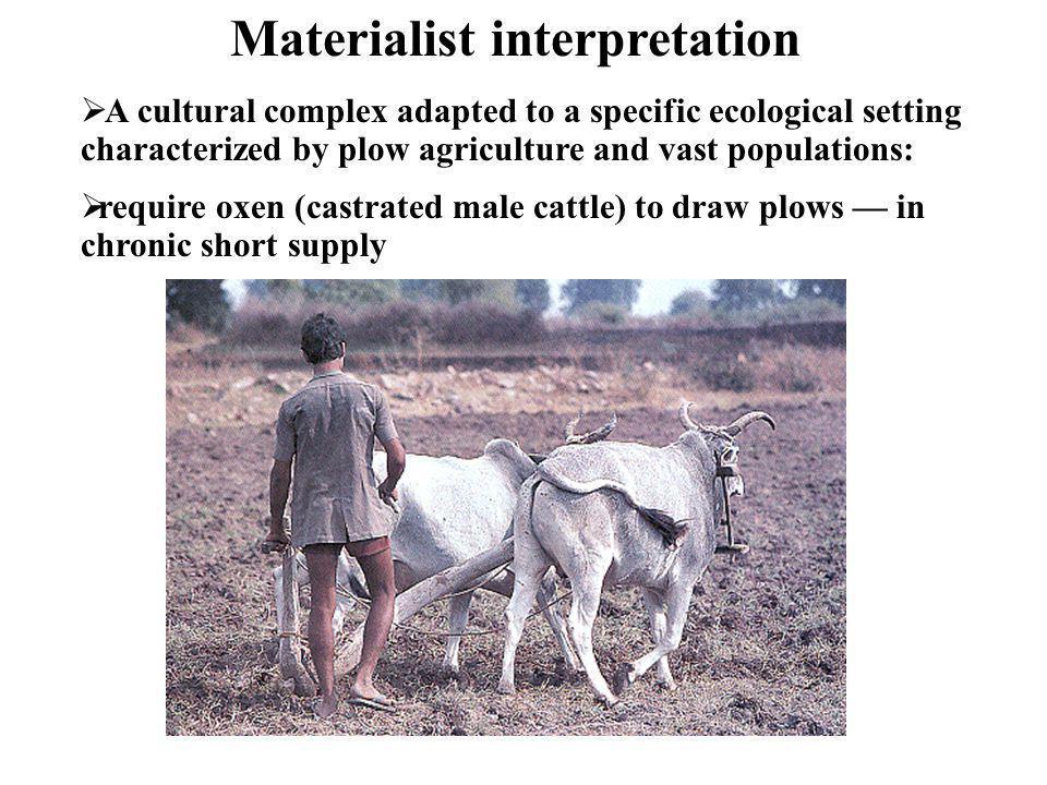 Materialist interpretation