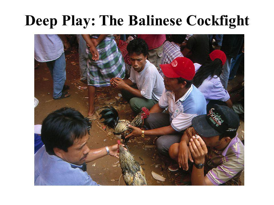 Deep Play: The Balinese Cockfight