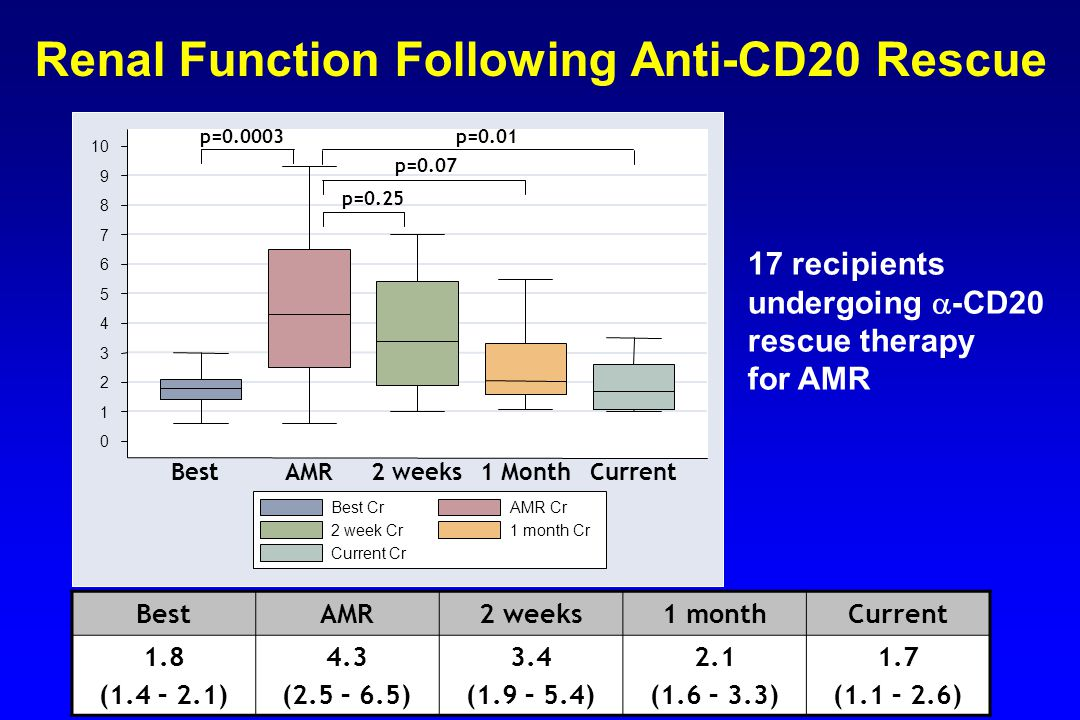 Renal Function Following Anti-CD20 Rescue