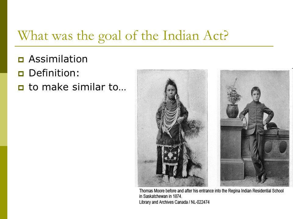 What was the goal of the Indian Act