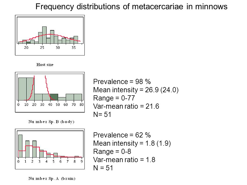 Frequency distributions of metacercariae in minnows
