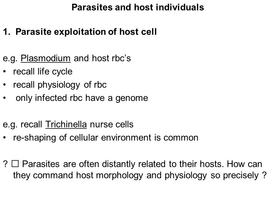 Parasites and host individuals