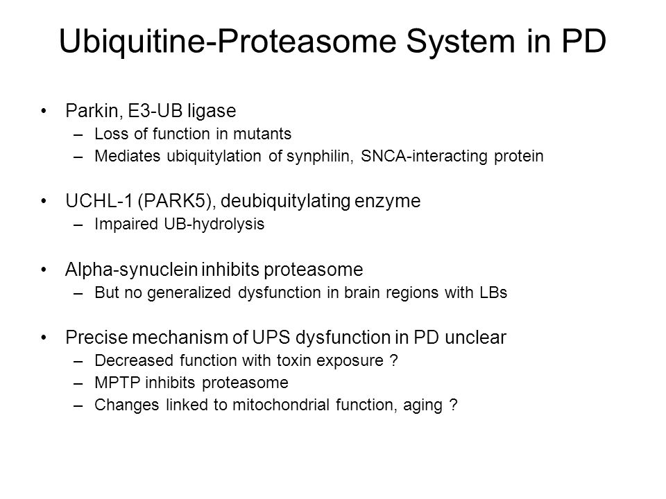 Ubiquitine-Proteasome System in PD