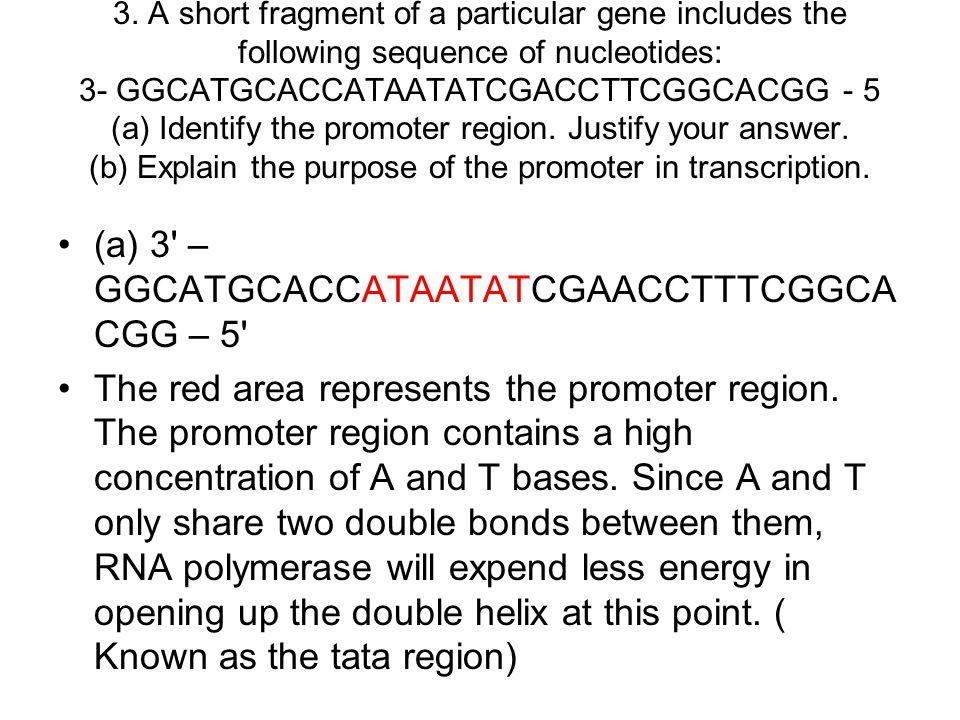 (a) 3 – GGCATGCACCATAATATCGAACCTTTCGGCACGG – 5