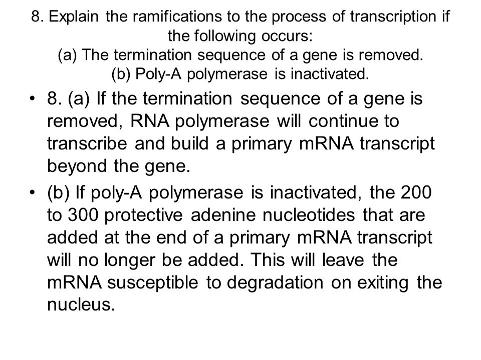 8. Explain the ramifications to the process of transcription if the following occurs: (a) The termination sequence of a gene is removed. (b) Poly-A polymerase is inactivated.